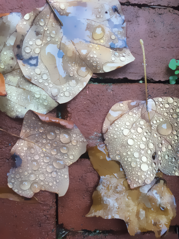 A little art found on the front walk.